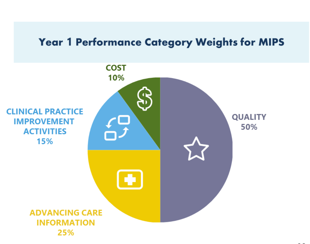 health care delivery performance category weights